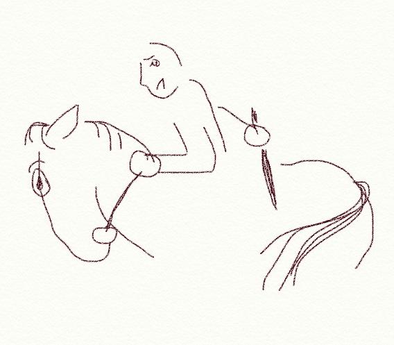 Pferde, Strafe, falsches Verhalten