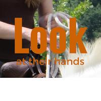 pferde verstehen - ein Horsemanship Blog