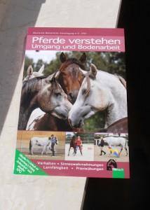 FN Grundlagen Pferde verstehen