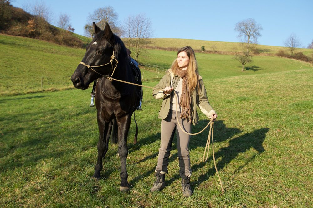 Widerstand im Pferd, Blog Pferde verstehen