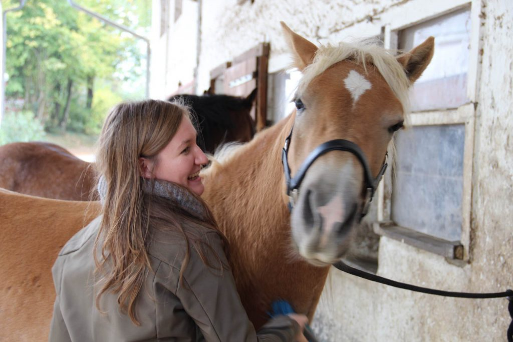 Pferde verstehen, Druck, Horsemanship