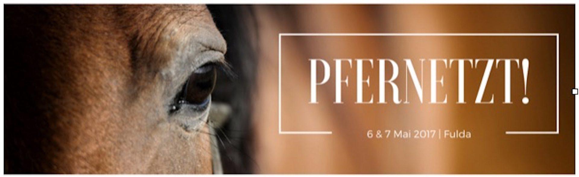 Pfernetzt – das Event für Pferdemenschen