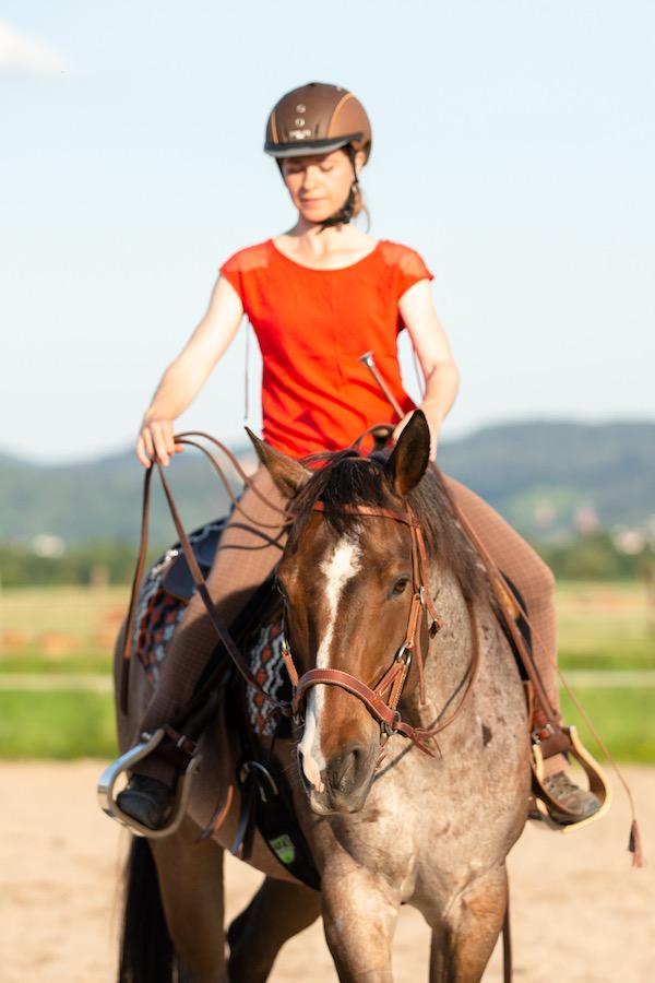 Zur Ausrüstung für Mensch und Pferd beim Reiten gehört meiner Meinung nach auch ein Reithelm.