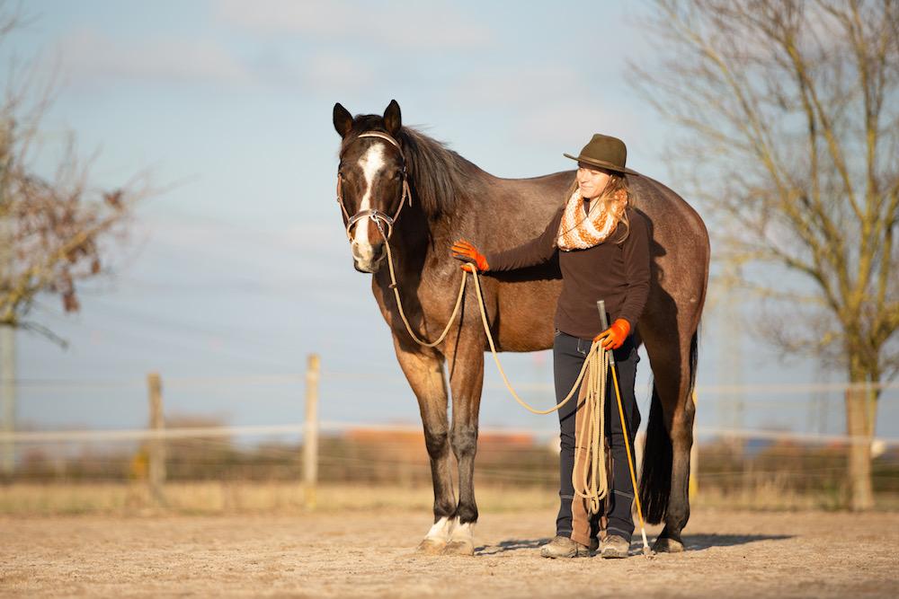 Ausrüstung für Pferd und Mensch: Die PN mit Kappzaum und Seillonge, ich mit Stick und Handschuhen.