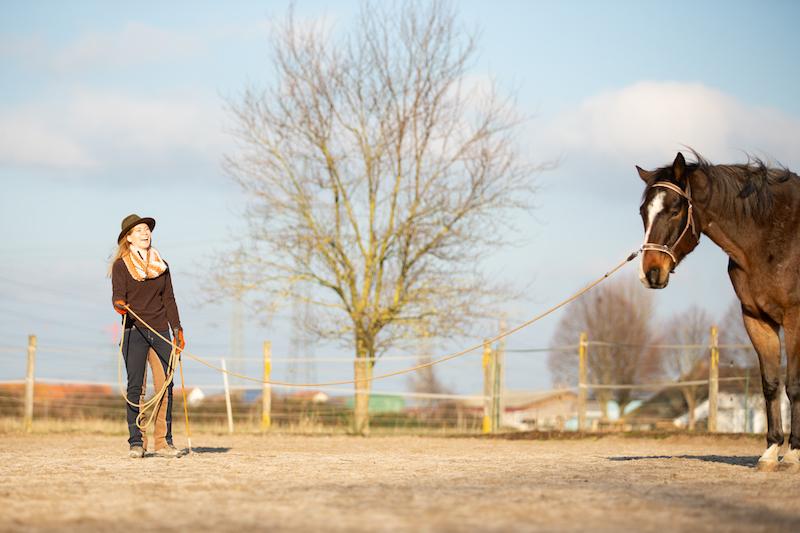Guter Pferdemensch, Pferd mit Mensch, Lachen