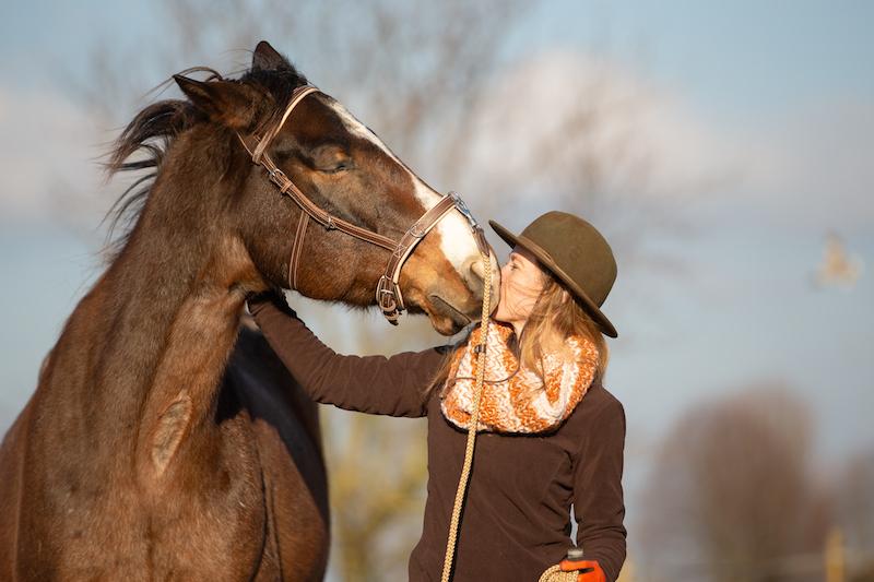 Guter Pferdemensch, Pferd mit Mensch, Verbindung