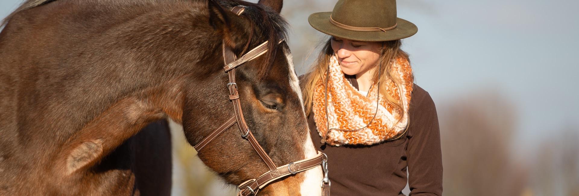 So wirst du ein guter Pferdemensch