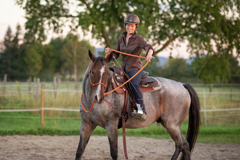 Anti-Seelenpferd: Reiterhilfen spielen heute nicht so die große Rolle.